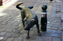 Brussels peeing dog statue